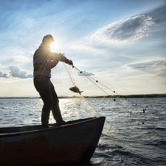 Fisherman hauling back a gillnet
