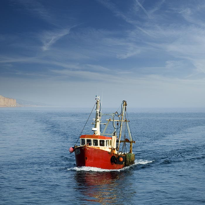 Vessel in transit from fishing grounds